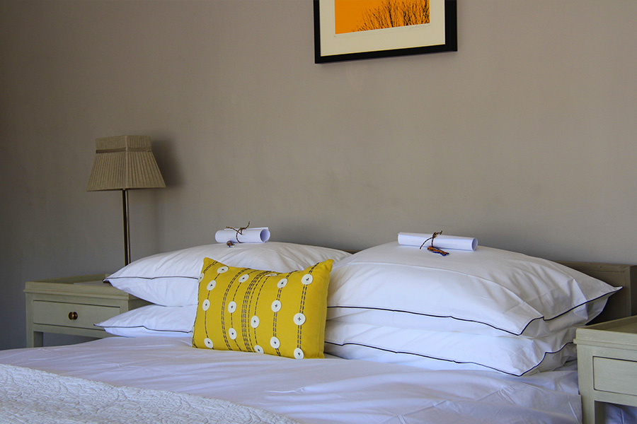 Yellow Room Pillows